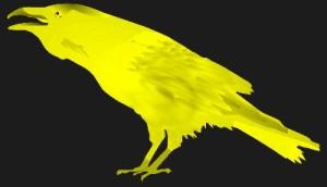 corbeau-seul2