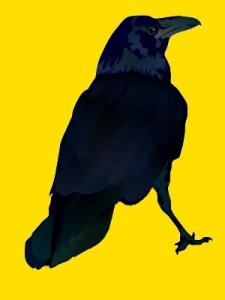 corbeau.jpg
